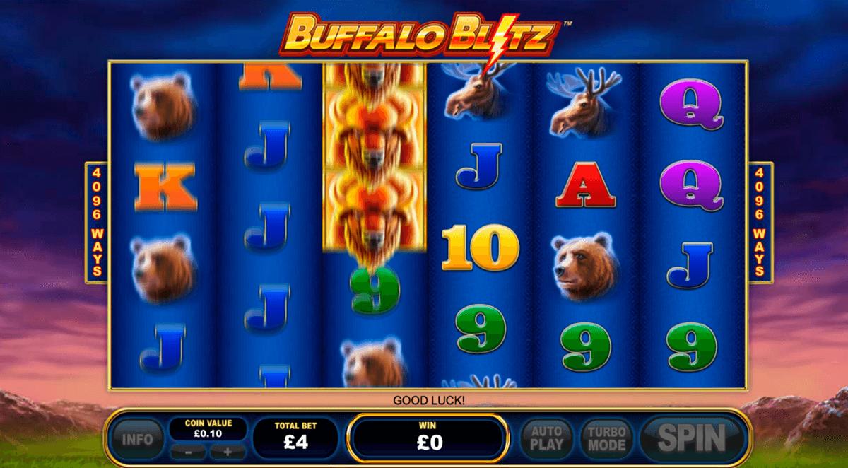 buffalo blitz playtech automat online