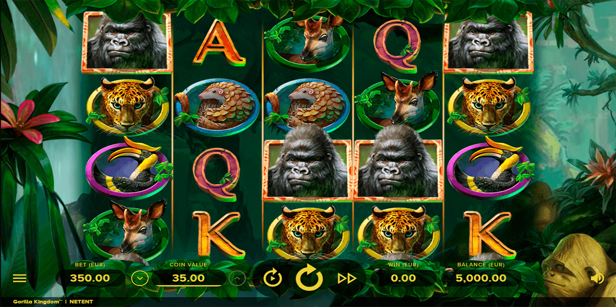 gorilla kingdom netent automat online